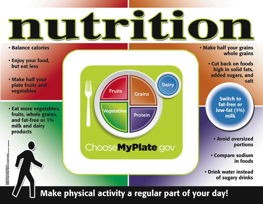 NEW! Nutrition - My Plate Poster
